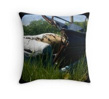 Pull Out Couch Throw Pillow