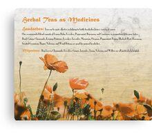 Herbal Teas as Medicines -Headaches Canvas Print
