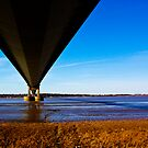 The Belly of the Bridge by Christopher Wardle-Cousins