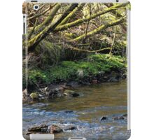 River and Trees Landscape iPad Case/Skin