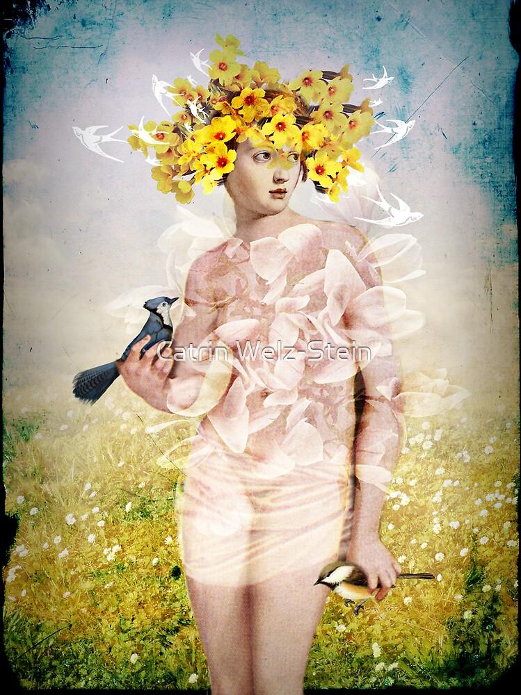 Spring by Catrin Welz-Stein