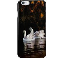 The beauty of youth iPhone Case/Skin