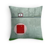 | B | Throw Pillow