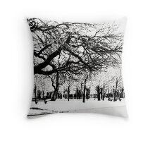 Frozen nature Throw Pillow