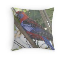 Come out to play Throw Pillow