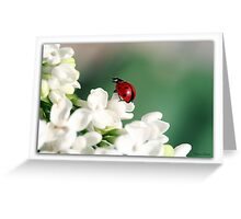 Spring has come! Greeting Card