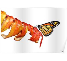 Autumn Monarch 2 Poster