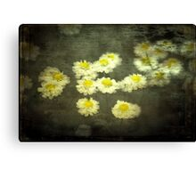 Daisies in Grunge Canvas Print