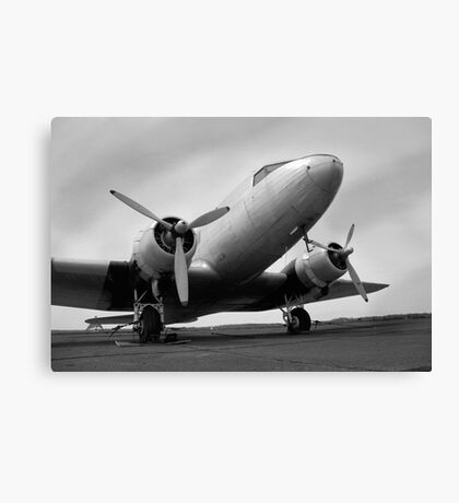 Flightfull Past Canvas Print