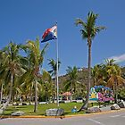 Palm trees in St Maarten by Keith Larby