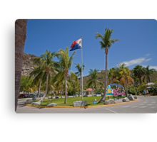 Palm trees in St Maarten Canvas Print