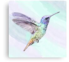 Hummingbird In Watercolors, On A Watercolor Blend Background Canvas Print