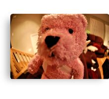 Funny Teddy Pink Bear Canvas Print