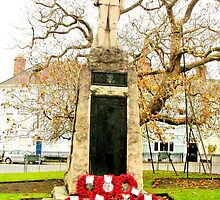 Monmouth's war memorial remembers by missmoneypenny