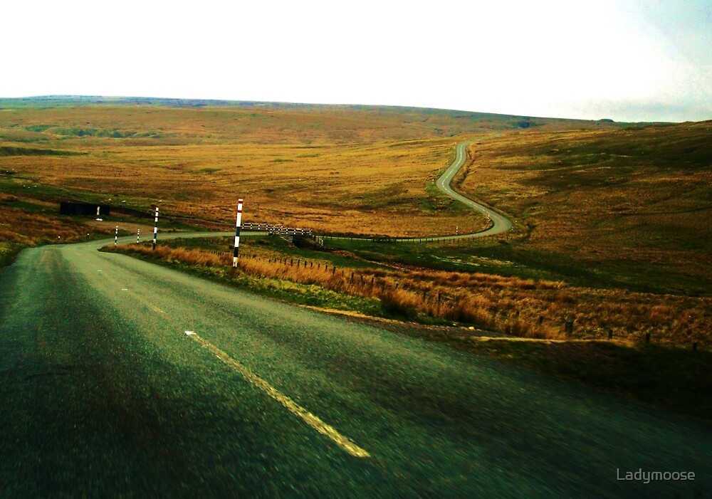 The Long and Winding Road by Ladymoose