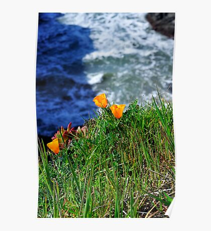 Marin Headlands  •  California Poster