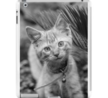 Playful Kitten iPad Case/Skin
