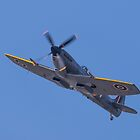 Spitfire TE311 by Lee Wilson