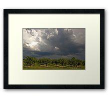 Moody Sky Framed Print