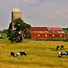 Oxford Farm by sundawg7