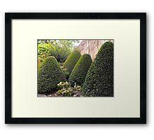 Topiary Garden Framed Print