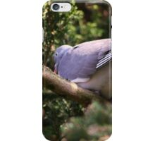 Wood Pigeon iPhone Case/Skin