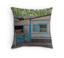 Bamboo house Throw Pillow