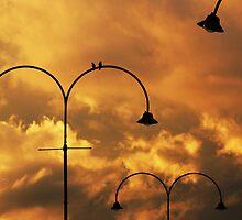 The Calm After The Storm by Brett Koschel
