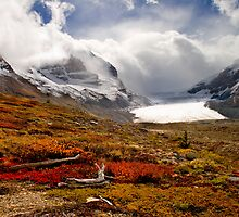 Athabasca Glacier and Mountains, Icefields Parkway NP, Alberta, Canada by PhotosEcosse