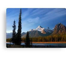 Icefields Parkway National Park, Lodgepole Pine and river, Alberta, Canada. Canvas Print