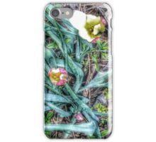Species Tulips iPhone Case/Skin