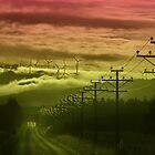 The Road to Cloud Nine by Peter Kurdulija