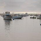 Plymouth Harbor  by John  Kapusta