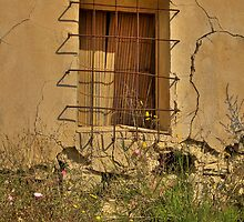 Window ~ Abandoned Finca by Squealia