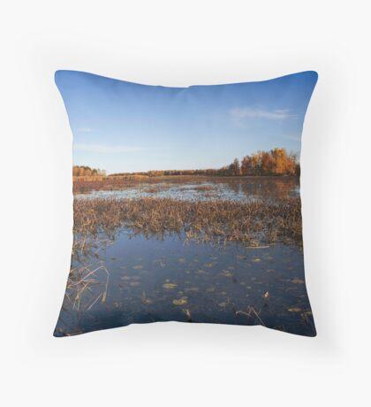 Marshy Throw Pillow