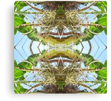 Tropical Kaleidoscapes 10 Canvas Print