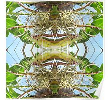 Tropical Kaleidoscapes 10 Poster