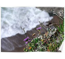 Marin Headlands  •  Cliff Purple Flowers  •   California Poster