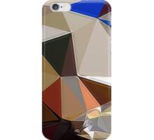 Hime#13 iPhone Case/Skin