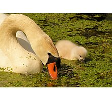 Mother & Child Photographic Print