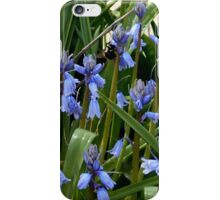 A Bee Among The Flowers iPhone Case/Skin