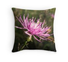 A Little Late Afternoon Color Throw Pillow