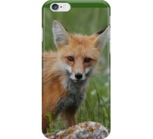 Brother Fox #1 iPhone Case/Skin