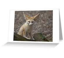 So I'm a little small for my Ears......... Greeting Card