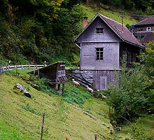 Schwarzwald, Germany by viewingglass