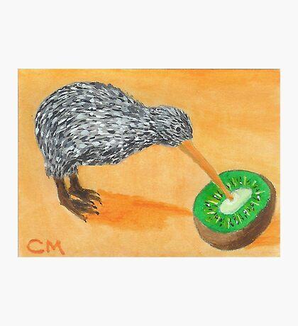 Kiwi Eating Kiwi Photographic Print