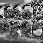Avon Viaduct Reflections B&W by Tom Gomez