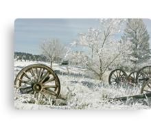 Frozen in Time Metal Print