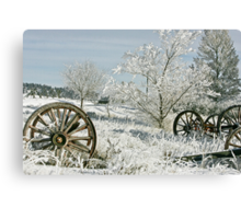 Frozen in Time Canvas Print