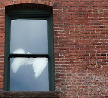 Ghosts in the window by Sue Morgan